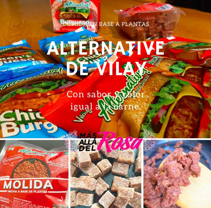 Mi experiencia con Alternative de Vilay